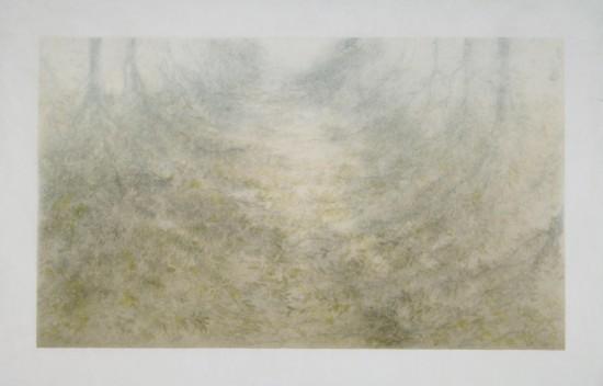 Tomomi Ono - 3Woods - Underground