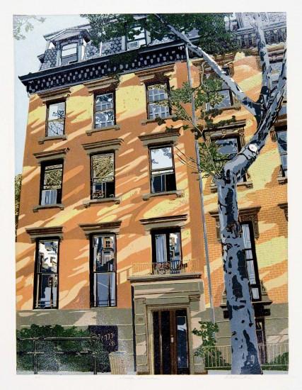 Walter Buttrick - Brooklyn Brownstones